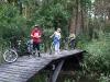 forest-trip-mazury