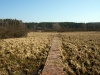 nature-trail-mierki